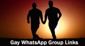 Gay WhatsApp Group Link
